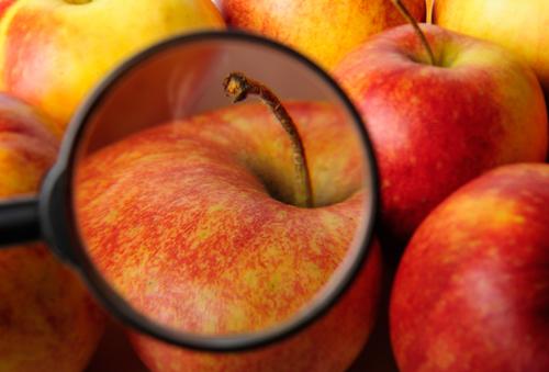 תקנות חדשות למניעת זיהומים במזון (אילוסטרציה)