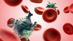 תאי HIV בדם. הדמייה
