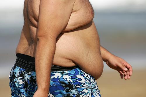 ההנחה הרווחת לפיה שומן סביב הבטן גורם למחלות לב מוטלת בספק