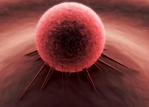 תא סרטני (אילוסטרציה)