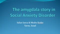 The amygdala story in Social Anxiety Disorder
