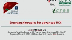 Emerging therapies for advanced HCC