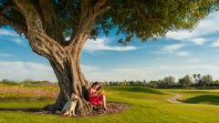 שכונת הגולף בקיסריה: אין עוד השקעה כזו
