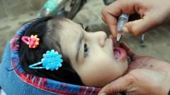 מבצע חיסון נגד פוליו בפשוואר, פקיסטאן בשנה שעברה (צילום: אילוסטרציה)