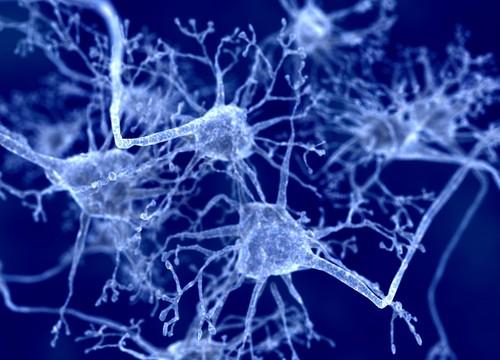 נוירונים, מחלת פרקינסון (איור: אילוסטרציה)
