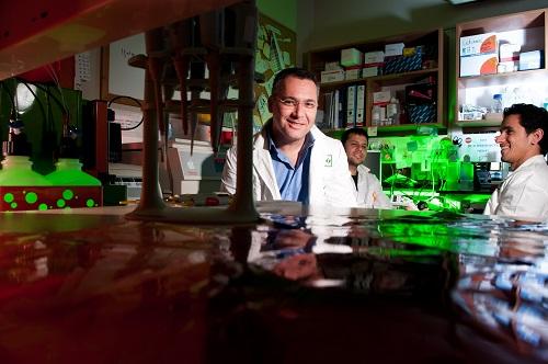 """ד""""ר אלי לואיס וצוותו (צילום: דני מכליס, אוניברסיטת בן-גוריון)"""