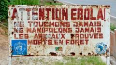 שלט המזהיר מפני אבולה בקונגו, ב-2012 (צילום: אילוסטרציה)
