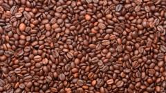 קפאין, פולי קפה (צילום: אילוסטרציה)