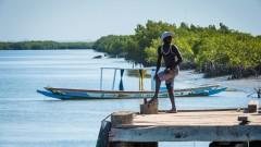 גמביה (צילום: אילוסטרציה)