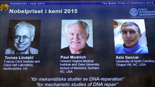 """זוכי פרס נובל בכימיה 2015 (צילום: יח""""צ)"""