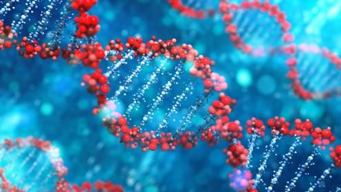"""וריאנטים גנטיים, דנ""""א (צילום: אילוסטרציה)"""