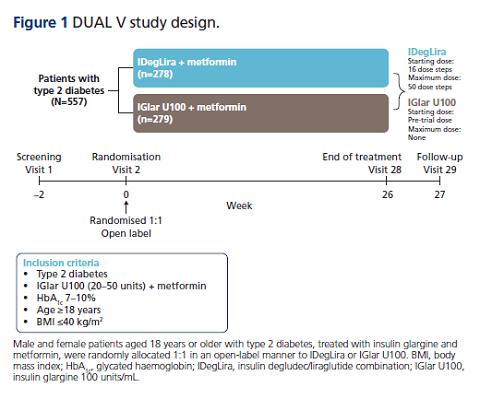 תרשים 1: מחקר ה-DUAL V